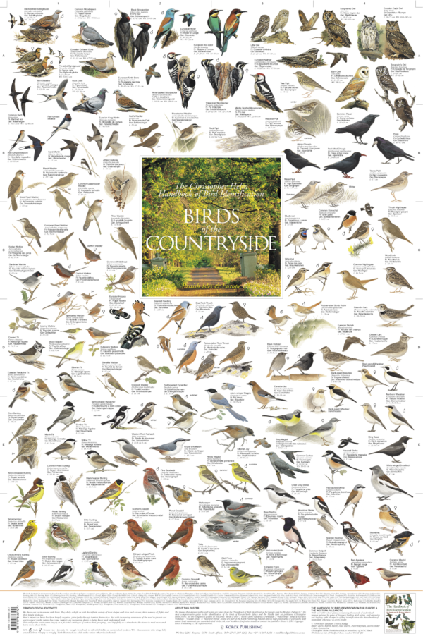 Birds of the Countryside - British Isles & Europe