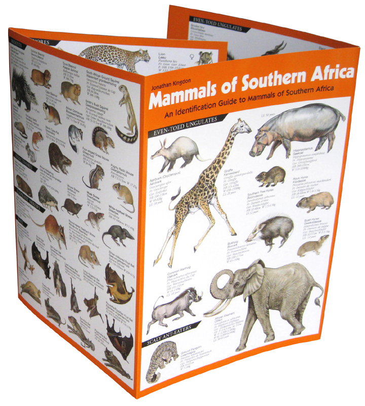 Mammals of Southern Africa ID Guide